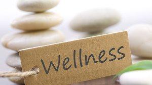 27-04-2015-12-27-19-wellness_01