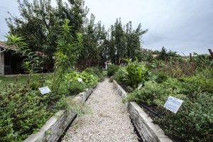 ezerjó kert